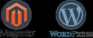 Magento of wordpress website?