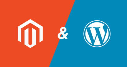 magento plugin of wordpress plugin