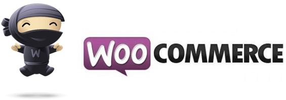 Wordpress webshop woocommerce